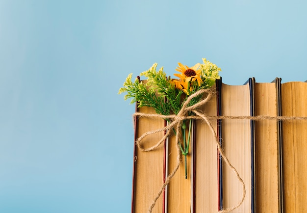 Vista frontal fila de libros con flores