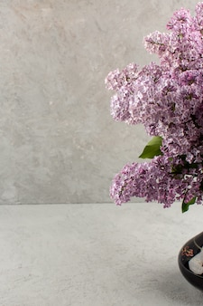 Vista frontal flores púrpura hermosa naturaleza en el gris
