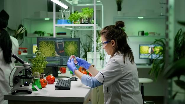 Vista frontal de la investigadora analizando placa de petri con carne vegana escribiendo experiencia biológica en computadora