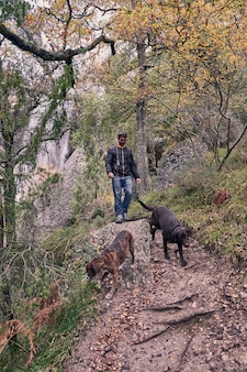 Vista frontal del joven paseando por el bosque con sus perros, un labrador retriever y un boxeador.