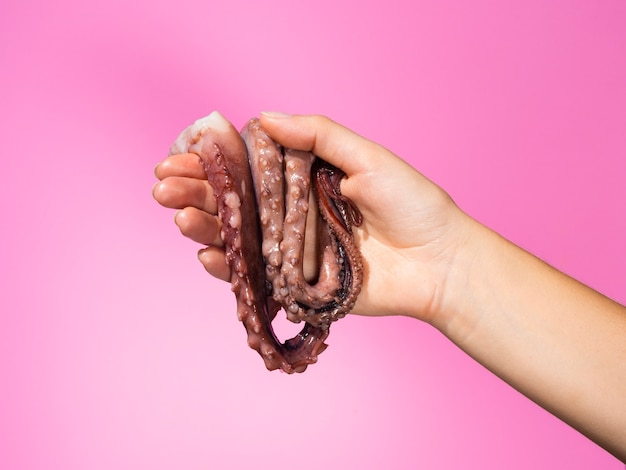 Vista frontal de la mano con pulpo fresco