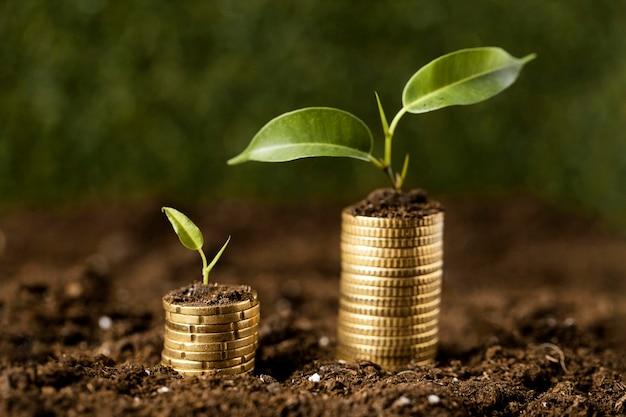 Vista frontal de monedas apiladas sobre tierra con plantas