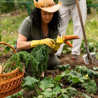 Vista frontal mujer cosechando zanahorias