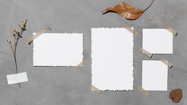 Vista frontal del papel blanco en blanco con hoja