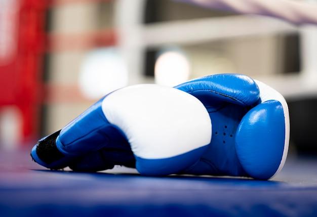 Vista frontal del par de guantes de boxeo