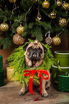 Vista frontal del perro junto al árbol de navidad