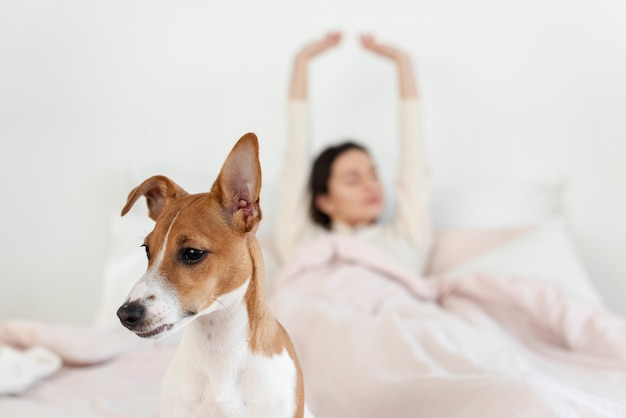 Vista frontal del perro con mujer desenfocada en la cama