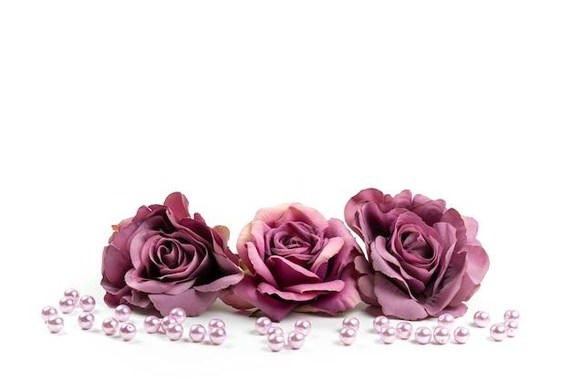 Una vista frontal de rosas marchitas de color púrpura sobre un escritorio blanco, imagen en color de plantas de flores