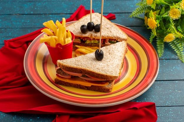 Vista frontal sabrosos sándwiches dentro de placa colorida dentro de jamón de queso con papas fritas en azul