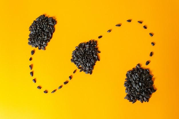 Una vista frontal de las semillas de girasol negras y fritas forradas en amarillo