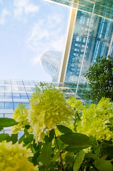 Vista inferior a través de las flores de geranio de los rascacielos de cristal del distrito de negocios de parís la defense contra un cielo azul nublado