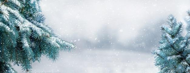 Vista invernal con ramas de abeto cubiertas de nieve y bosque en la distancia durante las nevadas