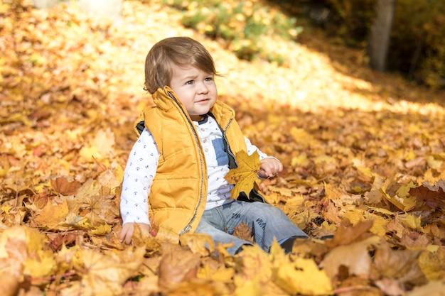 Vista lateral del bebé sentado en las hojas