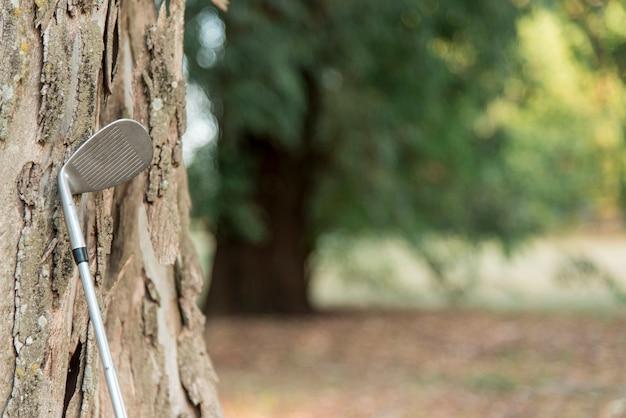 Vista lateral del club de golf al lado del árbol