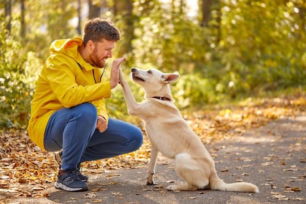 Vista lateral del hombre amigable jugando con el perro en la naturaleza, chico sonriente pasar tiempo con el animal, caminar