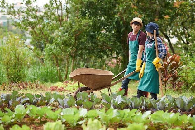 Vista lateral de los jardineros caminando por las camas del jardín mirándose y hablando