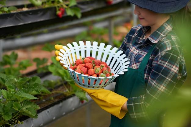 Vista lateral de la joven campesina sosteniendo un tazón de fresas