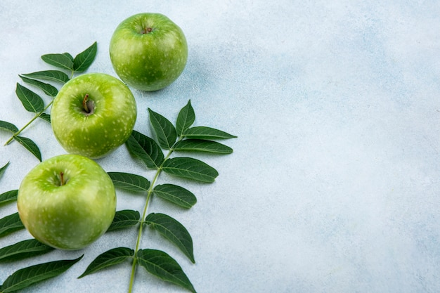 Vista lateral de manzanas verdes con ramas de hojas