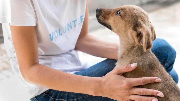 Vista lateral del perro de rescate amando el afecto que recibe de la mujer en el refugio