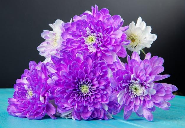 Vista lateral del ramo de flores de crisantemo de color violeta y blanco aislado en fondo azul y negro