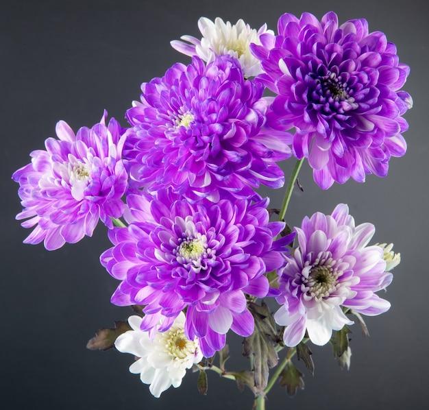 Vista lateral del ramo de flores de crisantemo de color violeta y blanco aislado en fondo negro