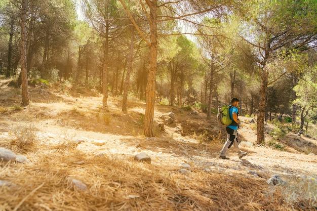 Vista lateral de senderista en bosque