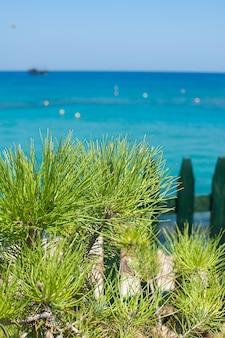 Vista del mar mediterráneo en la isla de chipre, protaras