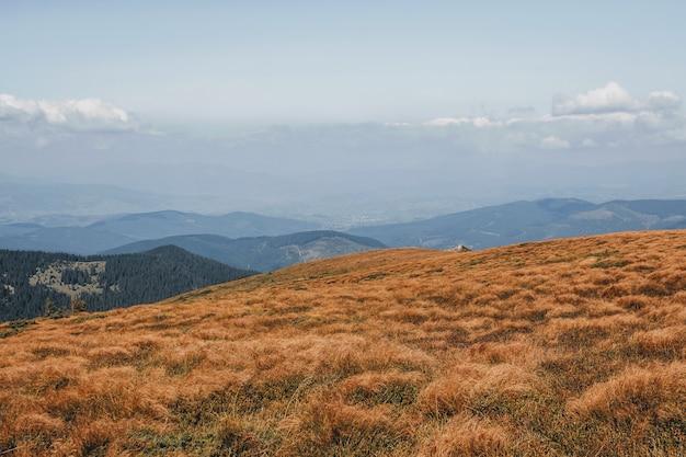 Vista desde la montaña hoverla. montañas de los cárpatos.