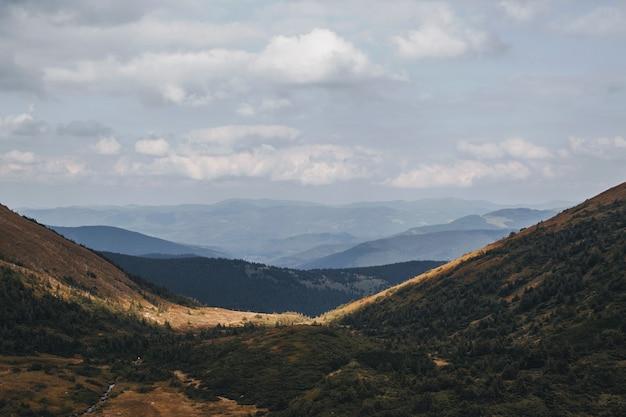 Vista desde la montaña hoverla en un valle. montañas de los cárpatos.