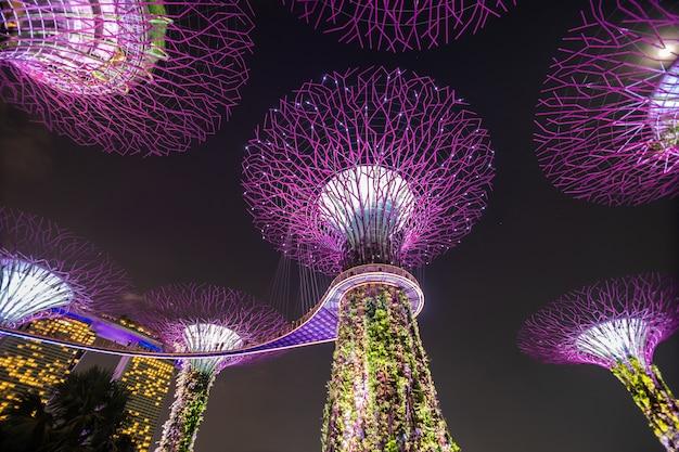 Vista nocturna de supertree grove en los jardines junto a la bahía de singapur. que abarca 101 hectáreas de tierra recuperada en el centro de singapur, adyacente al embalse de marina