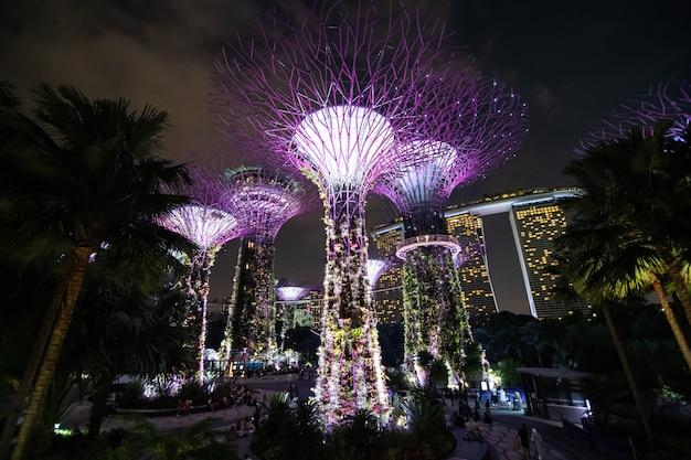 Una vista nocturna de supertrees grove, cloud forest flower dome en gardens by the bay