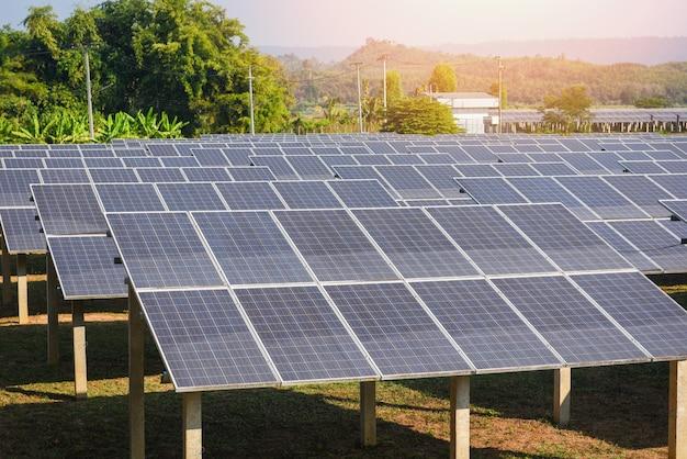 Vista de paneles solares en la granja solar con árboles verdes y luz solar reflejada / energía de células solares o energía renovable