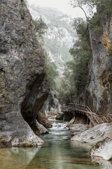 Vista panorámica del bosque y el río.