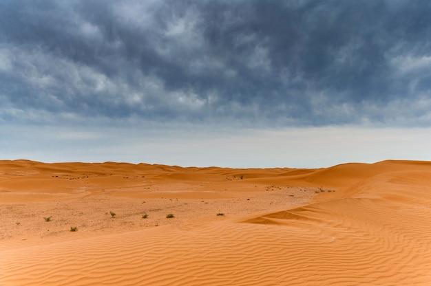 Vista panorámica de las dunas de arena o barchans del desierto en kalmykia, rusia