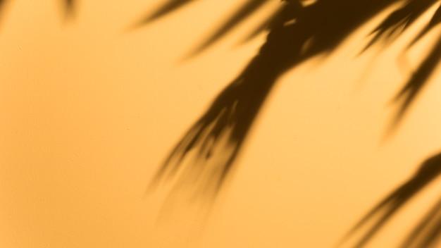 Vista panorámica de la hoja oscura borrosa sobre fondo amarillo