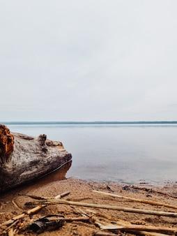 Vista panorámica de un lago en un bosque con aguas tranquilas en un día nublado.