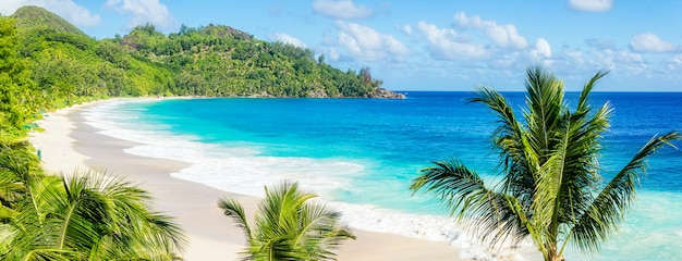Vista panorámica de la playa solitaria de arena con agua azul clara y palmeras, seychelles, isla de mahé
