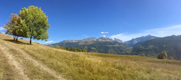Vista panorámica sobre el rango de montaña alpina desde un camino en un prado