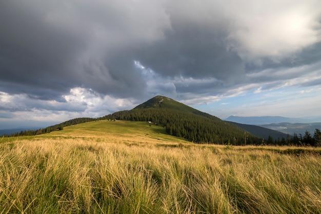 Vista panorámica de verano, verde valle herboso en distantes montañas leñosas bajo cielo nublado.