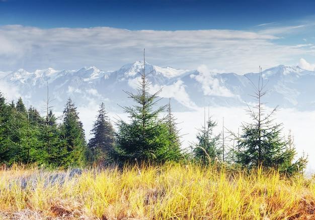 Vista de los picos de las montañas en primavera