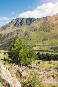 Vista pintoresca de verdes montañas.