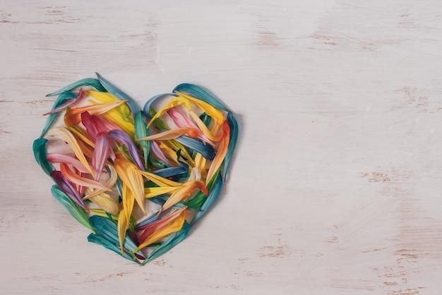 Vista plana. corazón de pétalos de flores de colores sobre un fondo blanco con lugar para el texto.