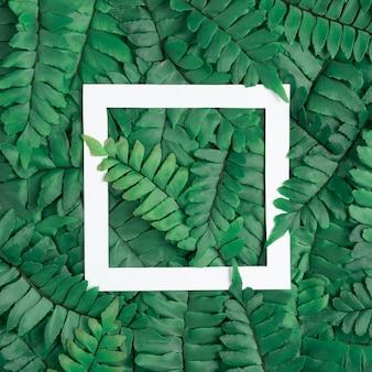 Vista plana laicos hojas verdes.