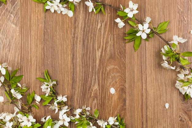 Vista en planta de flores frescas