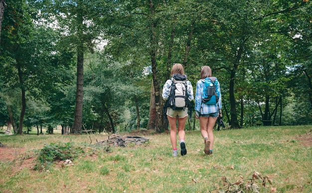 Vista posterior de dos amigas irreconocibles con mochilas caminando hacia el bosque