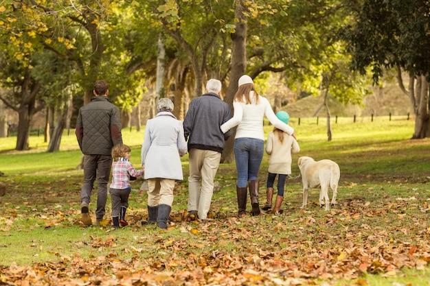 Vista posterior de una familia extendida