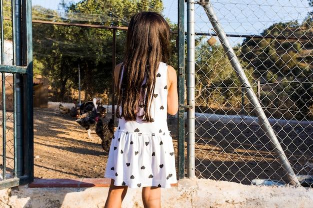 Vista posterior de la niña de pie fuera de la granja de pollos