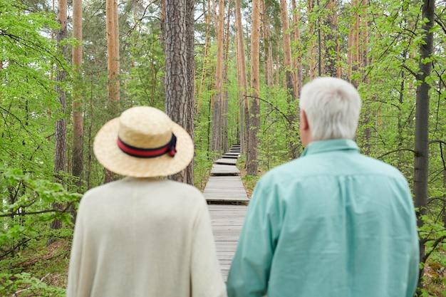 Vista posterior de la pareja senior contemporánea caminando por el sendero del bosque entre pinos altos en verano