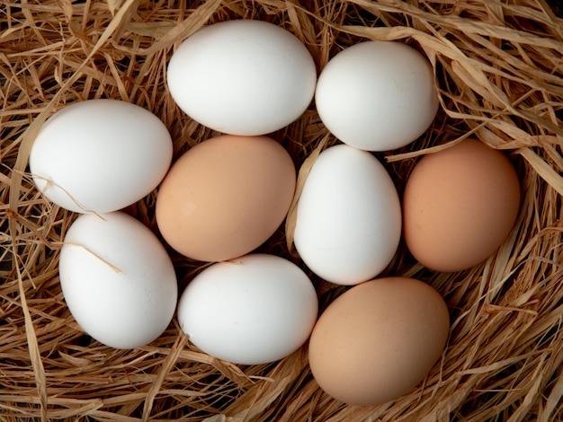 Vista de primer plano de los huevos en la superficie de la paja