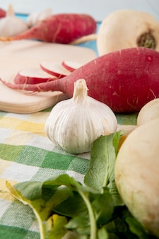 Vista de primer plano de verduras como ajo y rábano en la superficie de tela escocesa